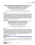 Đánh giá khả năng ức chế vi khuẩn Helicobacter pylori của một số dịch chiết thảo dược Việt Nam