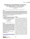Phát hiện gen và đột biến kháng erythromycin ở các chủng Streptococcus pneumoniae
