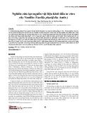Nghiên cứu tạo nguồn vật liệu khởi đầu in vitro cây Vanilla (Vanilla planifolia Andr.)