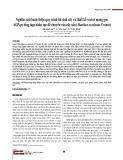 Nghiên cứu hoàn thiện quy trình tái sinh cây và thiết kế vector mang gen AGPopt tổng hợp nhân tạo để chuyển vào cây sắn (Manihot esculenta Crantz)