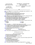 Đề thi HK2 môn Lịch sử lớp 10 năm 2017-2018 - THPT Quế Võ 1 - Mã đề 977