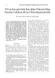 Tối ưu hóa quá trình thủy phân Chitosan bằng Enzyme Cellulase để tạo Chitooligosaccharide