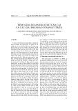 Tiềm năng di sản địa chất Lào Cai và các giải pháp bảo tồn phát triển