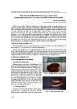 Một số đặc điểm sinh sản của cá ong căng terapon jarbua (Forsskal, 1775) vùng ven biển tỉnh Quảng Bình