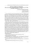 Bước đầu nghiên cứu nuôi trồng một loài nấm thực phẩm phát hiện ở vườn quốc gia Cát Tiên: Leucocoprinus cepaestipes (sow., fr.) pat