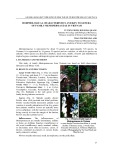 Morphological characteristics and key to genera of family menispermaceae in Vietnam