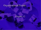 Lecture Business and industrial communication - Chapter 12: Organizational teams