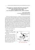 Ảnh hưởng của phương pháp phân tích số liệu trong việc đánh giá chất lượng nước bằng côn trùng thủy sinh tại Vườn Quốc gia Bidoup-Núi Bà, tỉnh Lâm Đồng