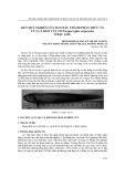 Kết quả nghiên cứu ban đầu thành phần thức ăn của cá kèo vẩy to parapocryptes serperaster ở Bạc Liêu