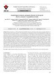 Morphological, chemical, and genetic diversity of wild myrtle (Myrtus communis L.) populations in Sicily