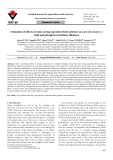 Evaluation of effects of water-saving superabsorbent polymer on corn (Zea mays L.) yield and phosphorus fertilizer efficiency