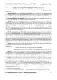 Khảo sát 11 trường hợp hội chứng wellen
