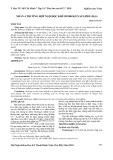 Nhân 4 trường hợp ngộ độc khí hydrogen sulfide (H2S)
