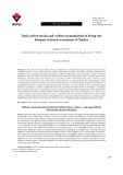 Total carbon stocks and carbon accumulation in living tree biomass in forest ecosystems of Turkey
