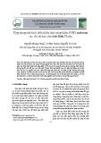 Ứng dụng mô hình biến thiên khả năng thấm (VIC) tính toán các chỉ số hạn cho tỉnh Bình Thuận
