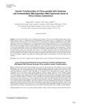 Genetic transformation of Citrus paradisi with antisense and untranslatable RNA-dependent RNA polymerase genes of Citrus tristeza closterovirus