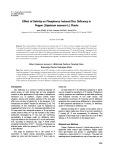 Effect of salinity on phosphorus induced zinc deficency in pepper (Capsicum annuum L.) plants