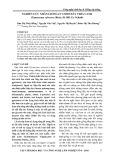Nghiên cứu nhân giống in vitro dây thìa canh (gymenema sylvestre (retz) R.RB. ex schult)