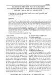 Đặc điểm cấu trúc lâm phần rừng tự nhiên nơi có loài giổi nhung (paramichelia braianensis (gagnep) dandy) phân bố tại Cao Nguyên Kon Hà Nừng