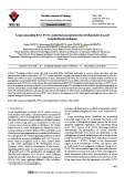Long noncoding RNA PVT1: Potential oncogene in the development of acute lymphoblastic leukemia