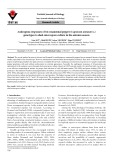 Androgenic responses of 64 ornamental pepper (Capsicum annuum L.) genotypes to shed-microspore culture in the autumn season