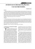 Di tích Óc Eo và việc bảo tồn, phát huy các giá trị văn hóa