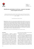 Identification and isolation of salt-stress−responsive transcripts from Gossypium arboreum L.