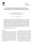 Bioremediation of endosulfan-contaminated soil by using bioaugmentation treatment of fungal inoculant Aspergillus niger