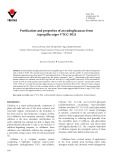 Purification and properties of an endoglucanase from Aspergillus niger VTCC-F021