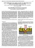 Thử nghiệm khả năng chống ăn mòn của benzotriazole được lưu trữ trong Tio2 Nano ống