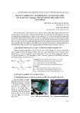 Kết quả nghiên cứu về dinh dưỡng của rắn ráo trâu ptyas mucosa (linnaeus 1758) non trong điều kiện nuôi tại Nghệ An