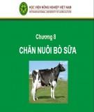 Bài giảng Chăn nuôi trâu bò - Chương 8: Chăn nuôi bò sữa