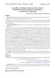 Đặc điểm - chỉ định và kết quả phẫu thuật phình động mạch chủ bụng dưới thận - Bệnh viện Bình Dân 11/2005-6/2007