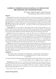 Nghiên cứu chỉ định và đánh giá kết quả các phương pháp điều trị sỏi ống mật chủ kèm sỏi túi mật