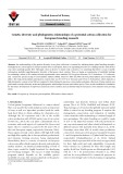 Genetic diversity and phylogenetic relationships of a potential cotton collection for European breeding research