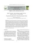 Nghiên cứu bào chế phytosome rutin
