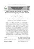Nghiên cứu phân lập nấm rễ nội cộng sinh Arbuscular Mycorrhiza trong đất trồng ngô và sản xuất chế phẩm phân bón vi sinh