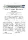 Luật Quốc tế và vai trò của các thiết chế phi nhà nước
