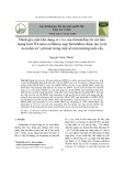 Đánh giá sinh khả dụng in vivo của famotidine từ vật liệu mạng lưới 3D-nano-cellulose nạp famotidine được tạo ra từ Acetobacter xylinum trong một số môi trường nuôi cấy