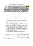 Sàng lọc in silico, thiết kế phân tử và tổng hợp các hợp chất hóa học có tác dụng ức chế enzym histon deacetylase (HDAC)