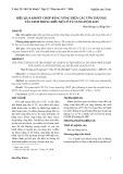 Hiệu quả khoét chóp bằng vòng điện các tổn thương tân sinh trong biểu mô cổ tử cung độ II & III
