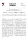 Lyophyllum turcicum (Agaricomycetes: Lyophyllaceae), a new species from Turkey