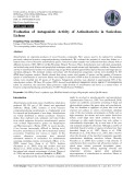 Evaluation of antagonistic activity of actinobacteria in saxicolous lichens