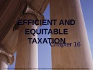 Lecture note Public finance (10th Edition) - Chapter 16: Efficient and equitable taxation
