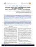 """Chương trình bình sai trị đo và ước tính độ chính xác lưới trắc địa – """"BKHCM"""""""