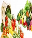 Giáo trình Dinh dưỡng và an toàn thực phẩm: Phần 2 - NXB Đà Nẵng