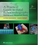 a practical guide to fetal echocardiography normal and abnormal hearts (3e): part 1