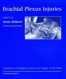 brachial plexus injuries: part 1