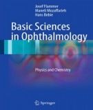 Ophthalmology and basic sciences: Part 2