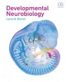 Neurobiology and the developmental: Part 1